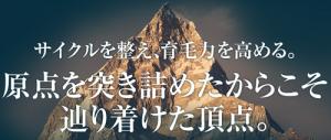 プランテルEX_大げさな文言3