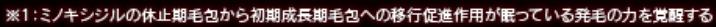 リグロex5_ミノキシジル作用機序