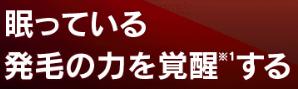 リグロex5_宣伝文句